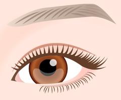 眼瞼下垂(切るデカ⽬)